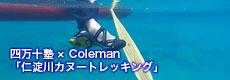 Coleman2016